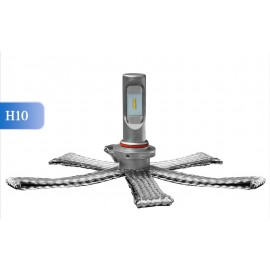LED Ersatzleuchtmittel H10, 12-24V, ultrakompakt, DAKAR-Lights 4 Jahre Garantie